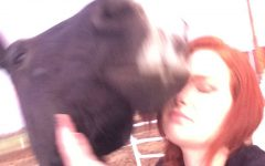Teen Mom: Raising Two Horses