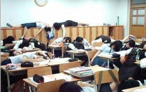 Sleeping in Class?