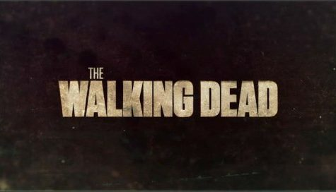 The Walking Dead Rules AMC