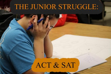 The Junior Struggle: ACT & SAT
