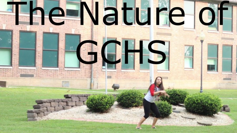 The Nature of GCHS