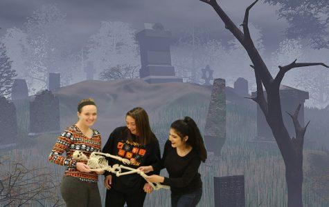 Halloween Scare Green Screen Slide Show
